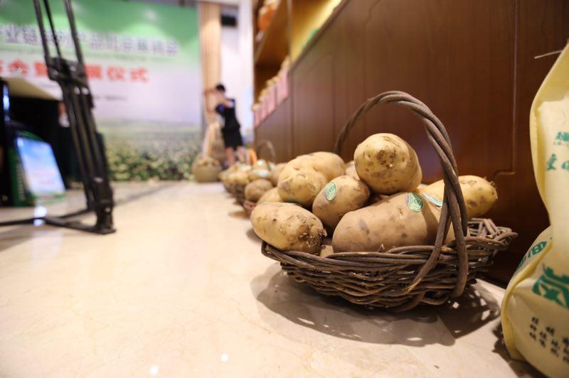 岚县土豆进北京 特色产品免费送图片