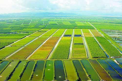 山西首批生态原产地产品保护示范区获批