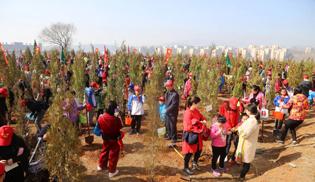 晋城:千人植树播新绿