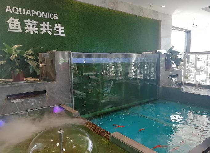 太谷变农谷引领北方地区现代农业手机亚游app高地